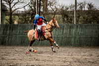 20.02.2018 Arena Gold Cup : HB Polo 13 vs Sifani 11 and Ojo Caliente 17 vs Twelve Oaks 14